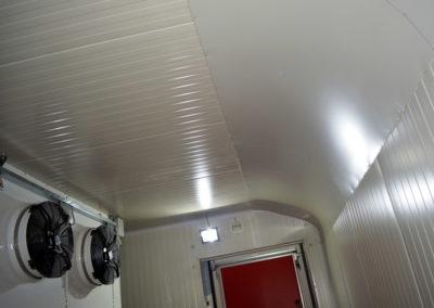 Frigovent-Tunel-za-zamrzavanje-maline-800-0092-Frigovent